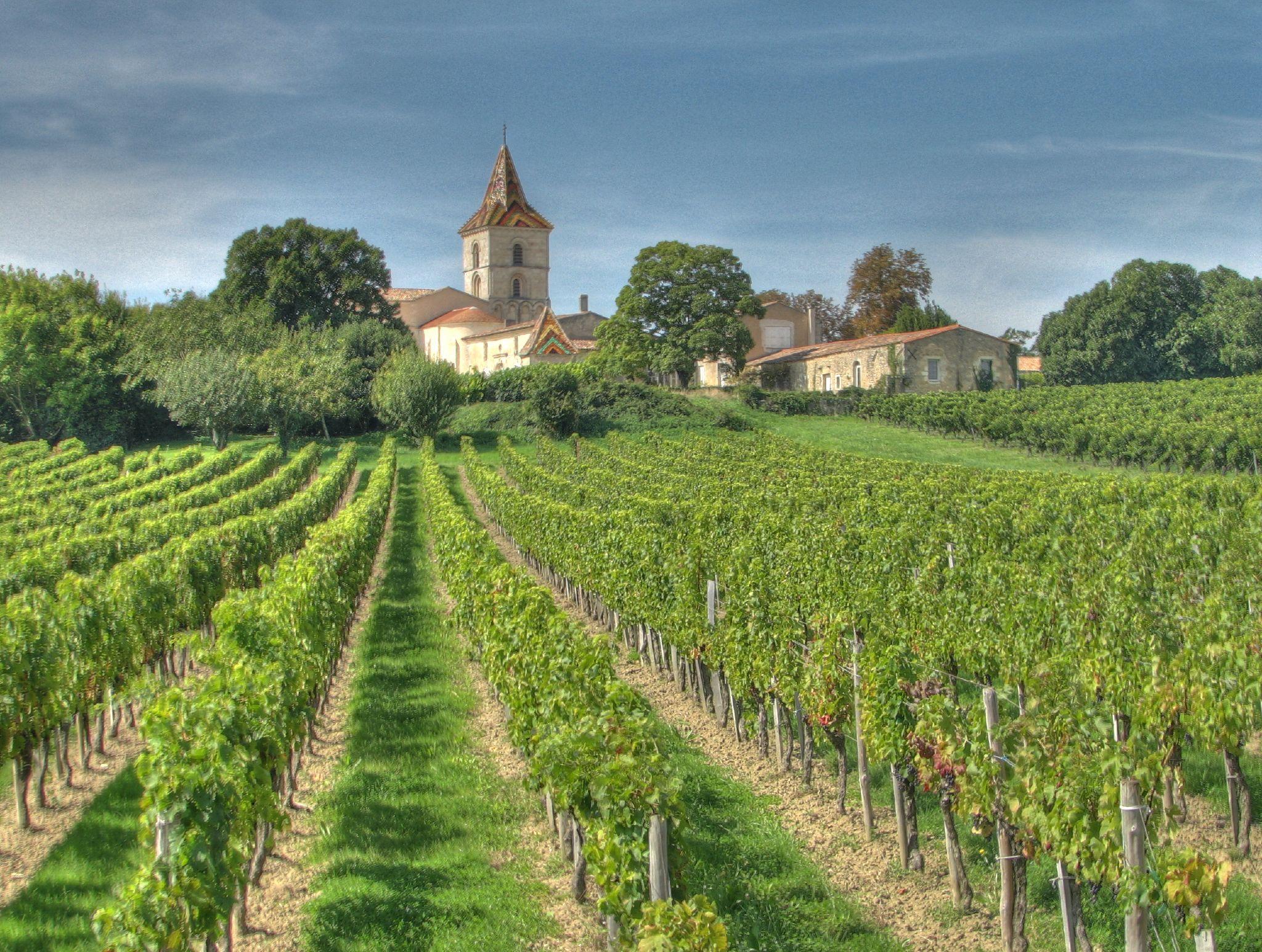 Waar komt de beste wijn vandaan?